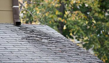 Signs of a Rotting Roof