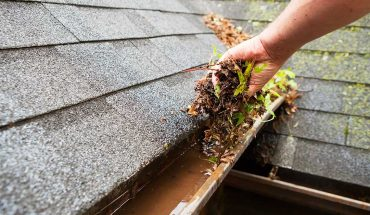 Maintain Your Roof in the Summer