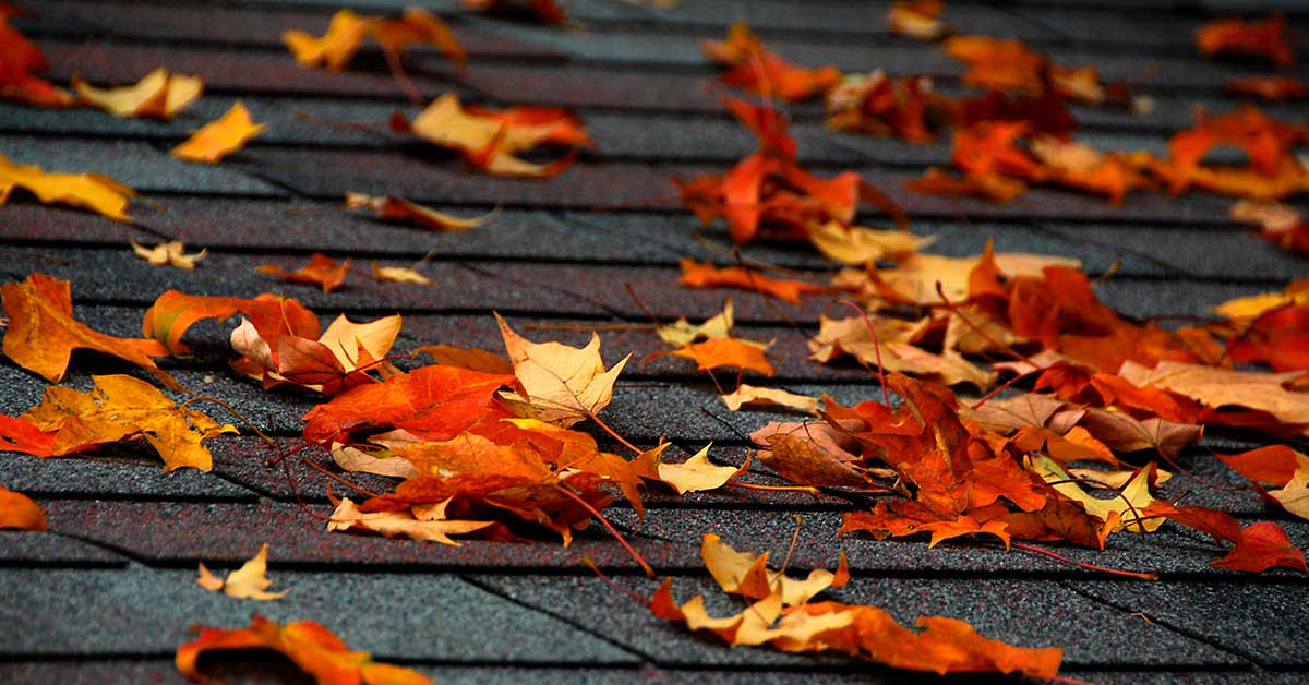 Is fall a good time to inspect your roof?